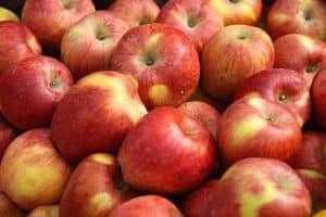 apples-984413-m